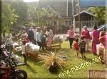 Bazaar DAY 1 - pic 4
