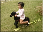 Horse-toys---pic-7