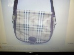 Bag - January 2012 Collection - pic 129_resize
